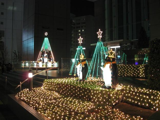 Photos: 新宿のイルミネーション