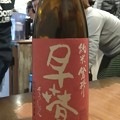 Photos: 早春 純米 袋搾り