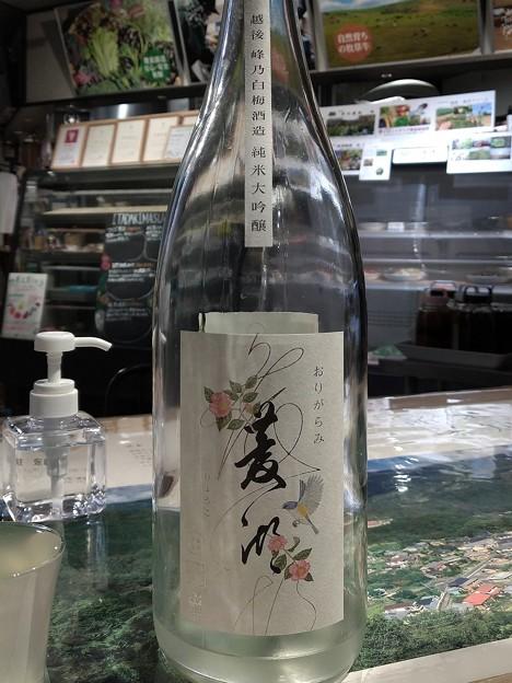 菱湖 純米大吟醸 山酒4号 おりがらみ生