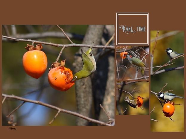 Photos: 柿レストラン♪