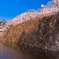 Photos: 朝の弘前城@弘前公園