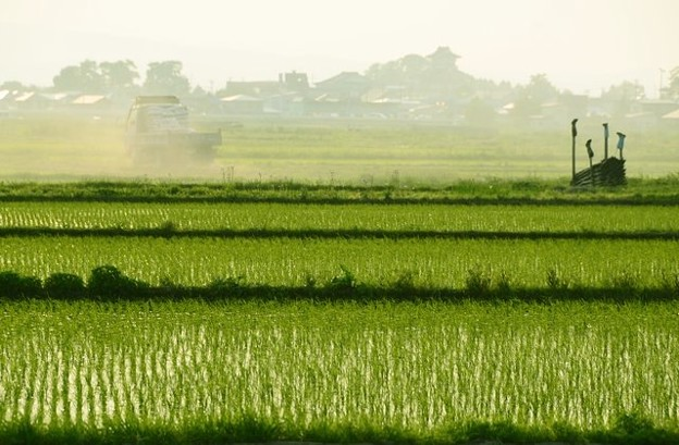 青森津軽の日常風景写真1枚~弘南鉄道沿線から農道へ抜けて…