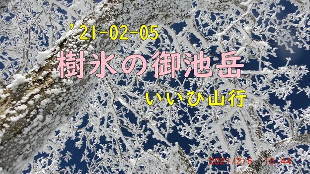 コピー ~ CIMG0389