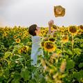 Photos: 麦わらと向日葵