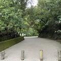 Photos: 城山公園2