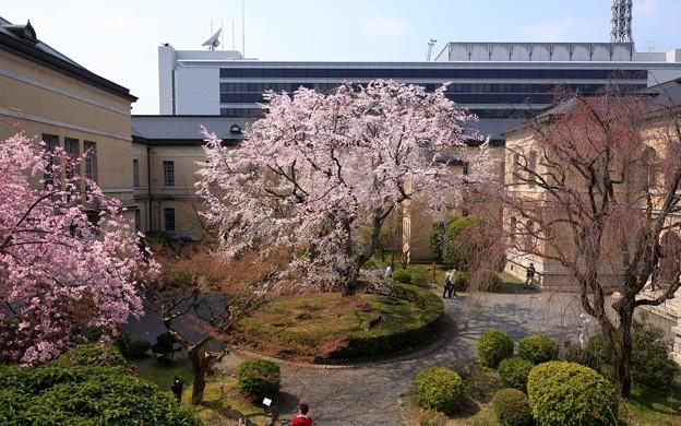 京都府庁旧本館17