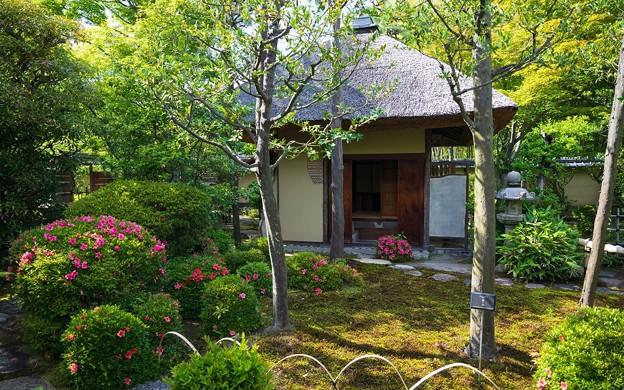 松花堂庭園46