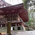 Photos: 神護寺50