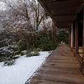 Photos: 高山寺30