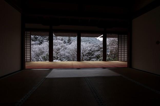 Photos: 高山寺29