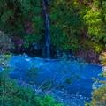 白ひげの滝12