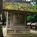 Photos: 皇大神社19