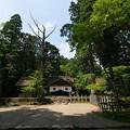 Photos: 皇大神社29
