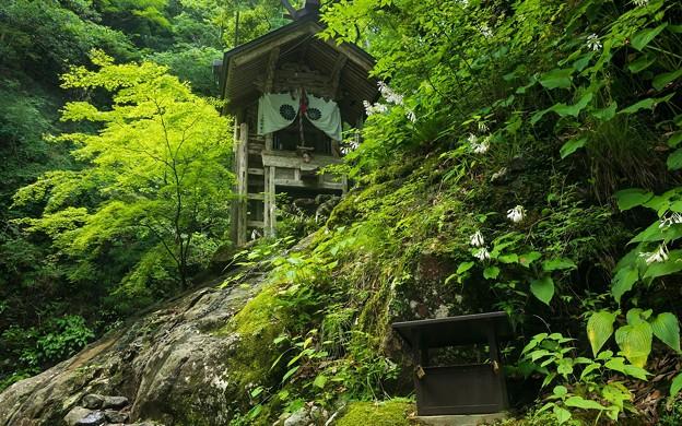 天岩戸神社07