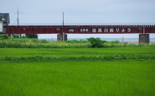 Photos: 由良川橋梁04