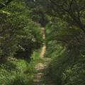 2003年六甲山08