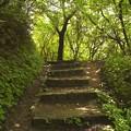 2003年六甲山02