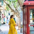 恋の電話ボックス