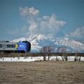 Photos: F012_利尻富士とSP宗谷