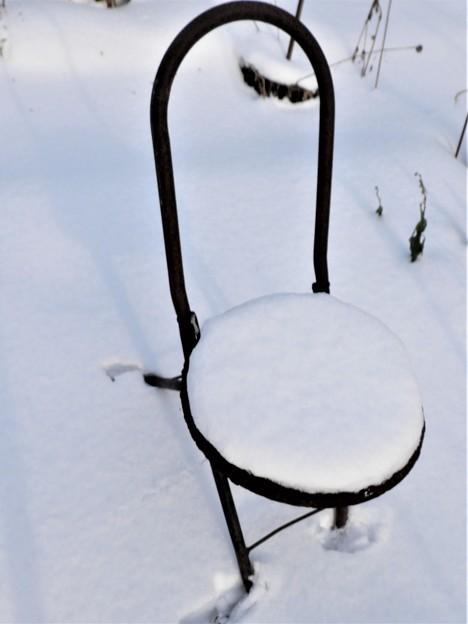 Photos: 冬の情景_2