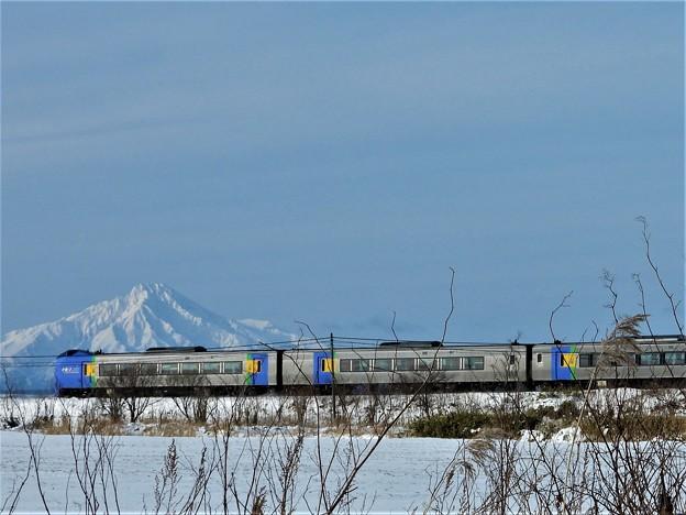 特急列車と利尻富士