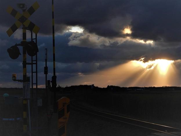 Photos: 光る鉄路