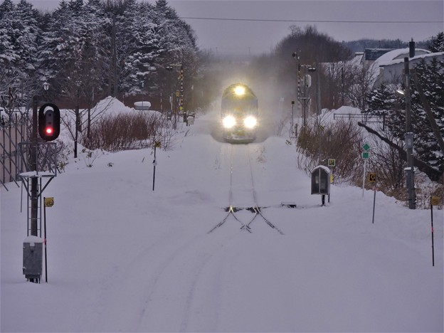 Photos: 特急列車は来たけれど・・・