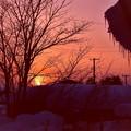 Photos: 氷柱のある夕景