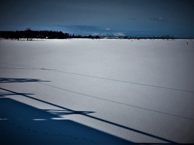 北狐の足跡