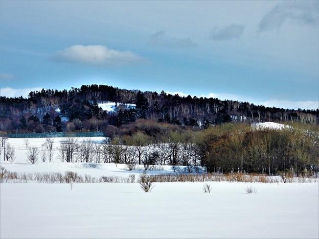 雪つもるお山