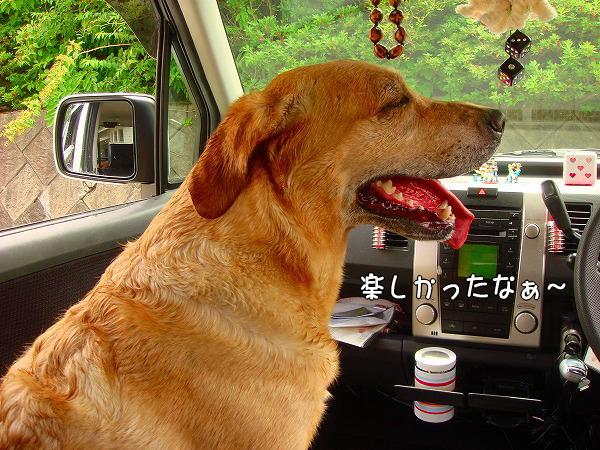 s-2008_0727myu0084