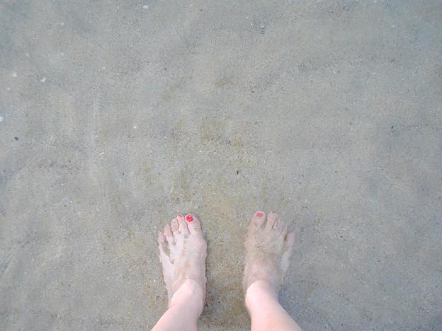 菊ヶ浜 #3