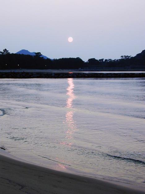 菊ヶ浜 #5