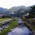 Photos: 津和野川 #11