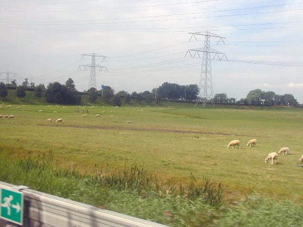 アムステルダム→ユトレヒト #1