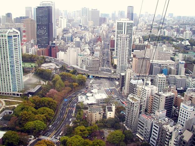東京タワー #6