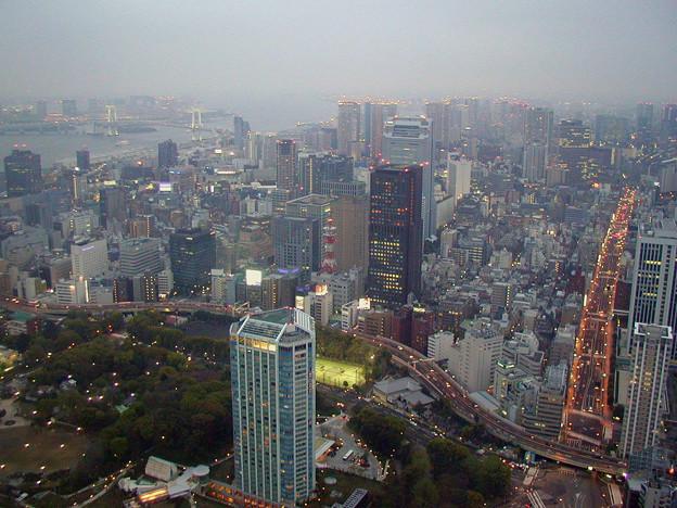 東京タワー #11