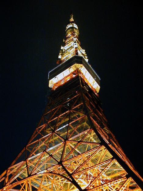東京タワー #19
