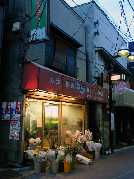 染井銀座商店街 #4