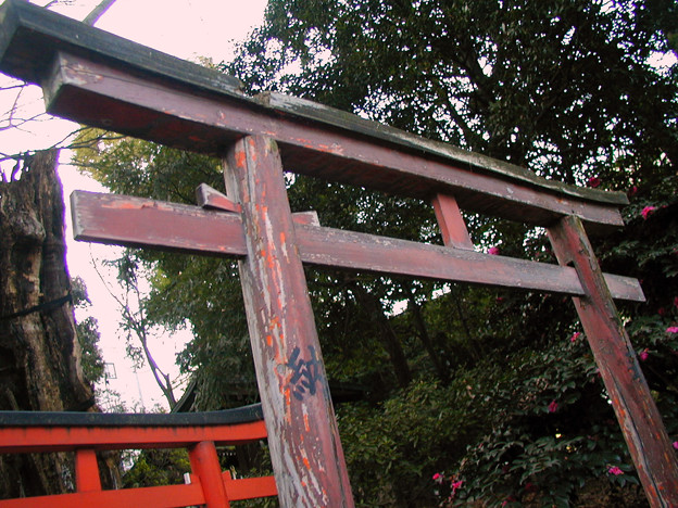 根津神社 #4