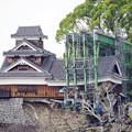 Photos: 熊本城 飯田丸五階櫓