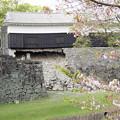 Photos: 熊本城 馬具櫓
