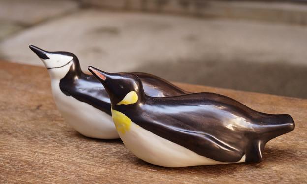 トボガンペンギン
