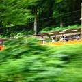 Photos: トロッコ電車!