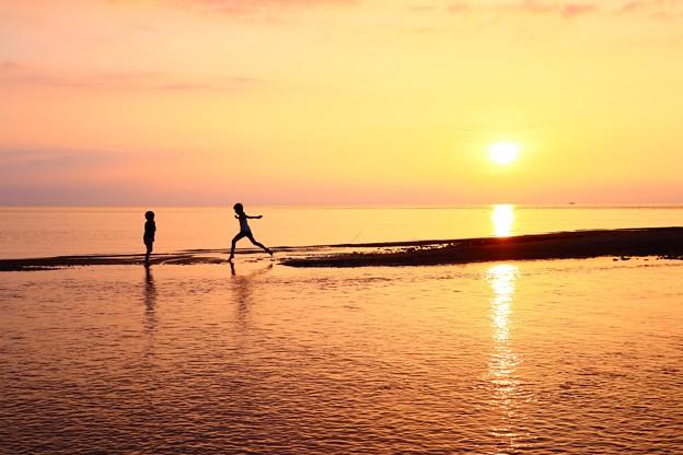Photos: 夏の冒険
