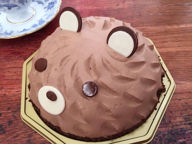 くまさんケーキ♪