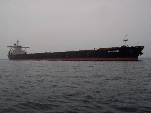 Bulk carrier - BLUEMOON