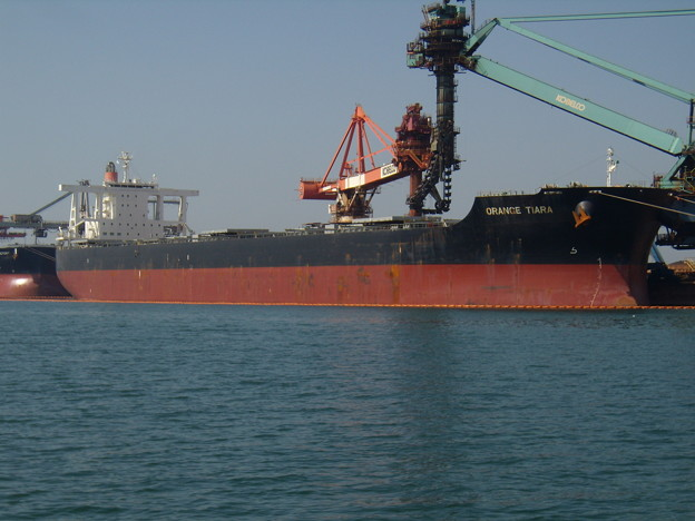 Bulk carrier - ORANGE TIARA