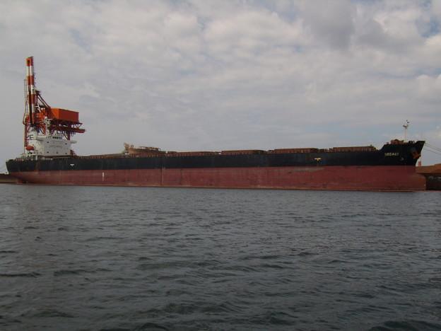 Bulk carrier - ROSALI