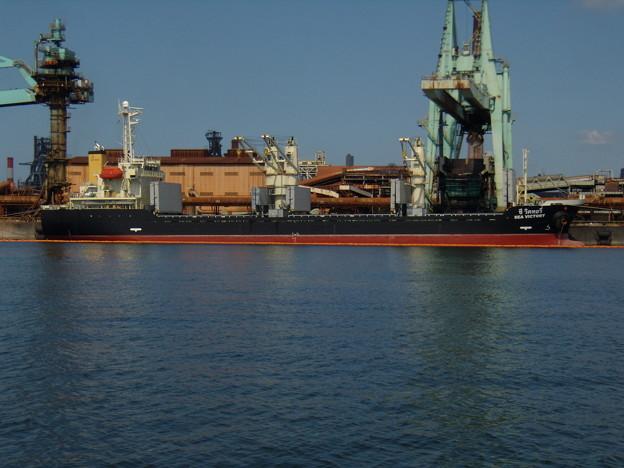Bulk carrier - SEA VICTORY